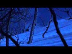 Jemina Staalon Veden vuosi 2: Lunta tulvillaan - ja kauhua: Skandinavian zombie-natsit! Natsit Antarktiksella? Død snø