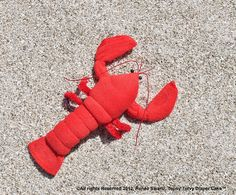 Washcloth Lobster, Crawfish for Diaper Cake Instructional Video