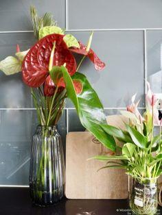Green Kitchen, Home Decor Inspiration, Cool Kitchens, Flower Power, Flower Arrangements, Most Beautiful, Glass Vase, Bloom, Study