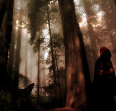 A manip piece based on the Brothers Grimm fairy tale, Little Red Riding Hood. Woods - [link] Little Red Ridin. Dark Fairytale, Red Cottage, She Wolf, Magic Forest, Big Bad Wolf, Red Hood, Red Riding Hood, Night Photography, Woods