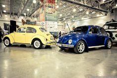 Incredible Retro Cars Collection
