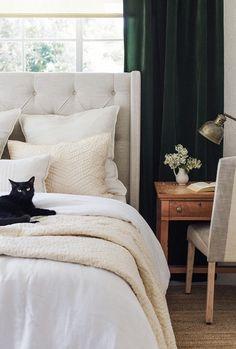 10 Best Velvet Curtains Bedroom Images Bedrooms Blinds