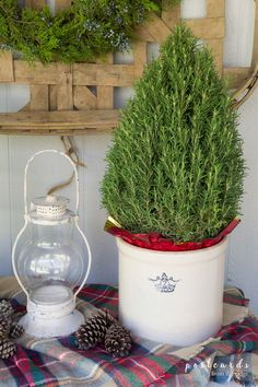 Love the snowy lodge themed porch with the rosemary tree and all the ideas for decorating with Christmas tree throughout the house. Cool Christmas Trees, Christmas Tree Themes, Diy Christmas Tree, Rosemary Christmas Tree, Christmas Time, Christmas Ideas, Merry Christmas, Country Christmas, Holiday Ideas