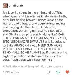 Legolas and Gimli (Middle Earth shenanigans) Baggins Bilbo, Thorin Oakenshield, Legolas And Aragorn, Minas Tirith, O Hobbit, J. R. R. Tolkien, Into The West, One Ring, Book Fandoms