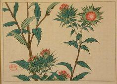 shibata zeshin flower | painted by the famous Japanese artist Shibata Zeshin