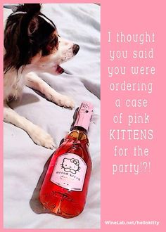 Rolo wants Hello Kitty Sweet Pink Wine *click to buy*