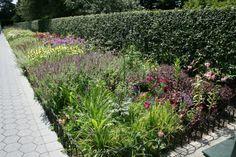 The Seasonal Walk Garden (NYBG)  Designed by Piet Oudolf and Jacqueline van der Kloet in 2013.