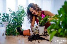 #plants, #nature, #indoorplants