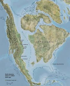 North America 77 Million Years Ago : geology National Geographic Maps, North America Map, Central America, Fantasy Map, Alternate History, Old Maps, Historical Maps, Angeles, Around The Worlds