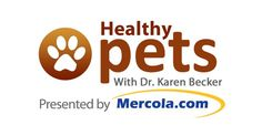 Watch pet health videos from Dr. Karen Becker as she discusses the holistic approach to pet nutrition, hygiene, grooming and more. http://healthypets.mercola.com/sites/healthypets/videos.aspx