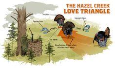 Decoy tips for turkey hunting - Hazel Creek Love Triangle // Realtree Bow Hunting Deer, Quail Hunting, Turkey Hunting, Hunting Dogs, Coyote Hunting, Pheasant Hunting, Crossbow Hunting, Archery Hunting, Hunting Gear