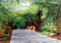 "Bamboo Avenue, also called ""Holland Bamboo"" This is located in the parish of St Elizabeth Jamaica, Home of the famous Black river which is a unique piece of Mother nature,Three and half miles of Bamboo grove that forms and Arch like a tunnel. When driven through It gives travelers a Majestic feeling."