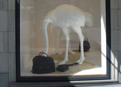 Clever and attention grabbing - Hermes Window Display