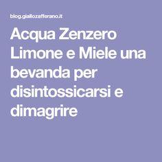Acqua Zenzero Limone e Miele una bevanda per disintossicarsi e dimagrire Detox Drinks, The Cure, Beverages, Food And Drink, Health Fitness, Healthy Recipes, Healthy Food, Namaste, Routine