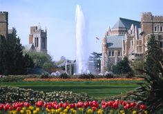 University of Washington, Washington. For your interest - MomentMatters.wordpress.com