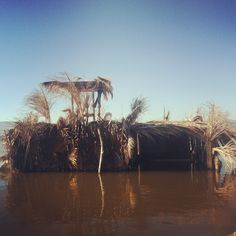 Our duck blind Waterfowl Hunting, Duck Hunting, Boat Blinds, Duck Calls, Duck Blind, Fishing Stuff, Hunting Blinds, Hubba Hubba, Climbing