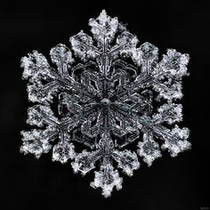 Snow flake from 2015 winter. I would love a necklace or broach, made like this. Snowflake Photography, Winter Photography, Winter Images, Winter Pictures, Snowflake Pictures, I Love Snow, Crystal Snowflakes, Ice Crystals, Winter Scenery