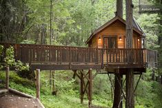 12 Treehouses You Need To Sleep In (two in Illinois)