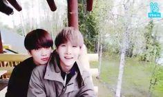 Jungkook e Suga *Amorzinhos* BTS