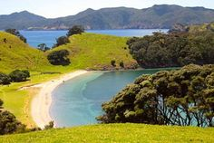 Urupukapuka Island, Rawhiti, New Zealand