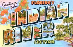 Photos: Greetings from Florida -- classic postcards - South Florida Sun-Sentinel.com