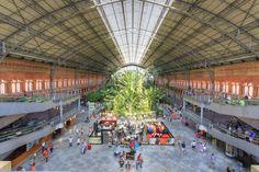 El jardín tropical de la estación de Atocha