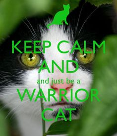 KEEP CALM AND and just be a WARRIOR CAT