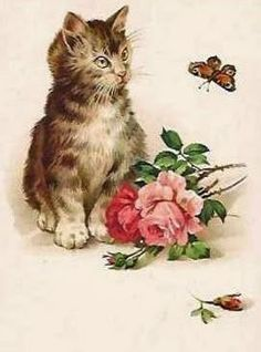 Vintage kitten with butterfly and rose