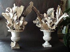 Shell filled urns