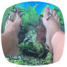 Vissenvoeten... Wat? Hoe is het om met je voeten in een aquarium te zitten? Lees het op www.addellen.nl
