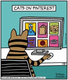 Cats on Pinterest by Maria Scrivan June 22, 2015