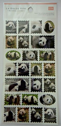Cute Real Panda Bear Stamp Shaped Photo Stickers From Japan - With Logs, Trees And Bamboo