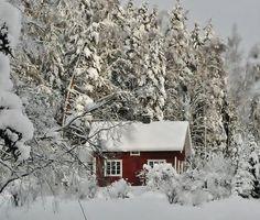Punainen mökki lumisten puiden suojassa...   Kuvakuja.fi