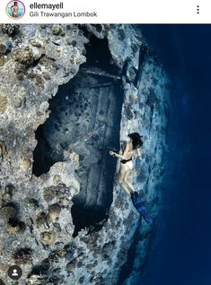 Lombok, Crocodile, Underwater, Outdoor, Outdoors, Crocodiles, Under The Water, Outdoor Games, The Great Outdoors