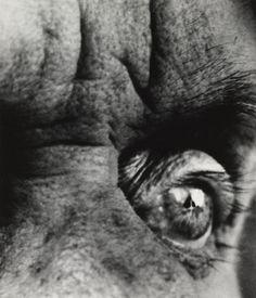 Max Ernst, 1963 by Bill Brandt