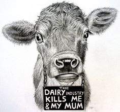 not your mother, not your milk - the diary industry kills me and my mum courtesy Jo Frederiks - Stolen Lives / Stolen Milk #vegan
