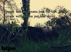 people with no dreams look for love people with dreams just look above...bipo
