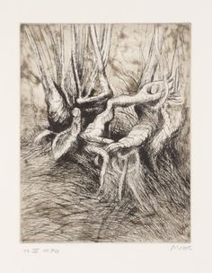 Henry Moore OM, CH 'Trees IV Tortured Roots', 1979 © The Henry Moore Foundation; All rights reserved DACS 2014