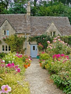 English cottage with painted light blue shutters and doors, with colorful pink roses and blooms in the front garden.