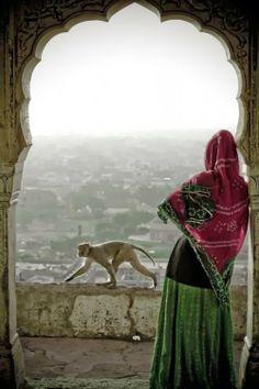 Jaipur- Rajastan, India