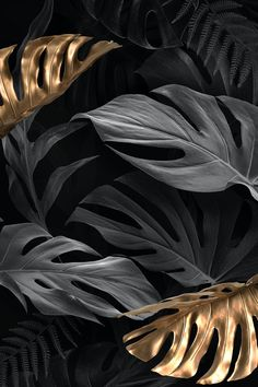 Black And Gold Aesthetic, Black Aesthetic Wallpaper, Aesthetic Backgrounds, Black Backgrounds, Wallpaper Backgrounds, Aesthetic Wallpapers, White And Gold Wallpaper, Gold And Black Background, Gold Wallpaper Background