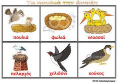 Картинки по запросу η ανοιξη School Projects, Projects To Try, Preschool Education, In Kindergarten, Early Childhood, Tinkerbell, Literacy, Rooster, Spring