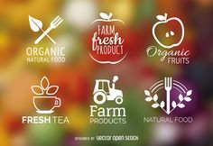 Flat designs featuring badges about fresh products and organic fruits and vegetagles. Every logo contains an illustrated item and costomizable words.