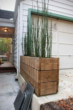 Horsetail reed + recycled wood Love the long narrow pot! Horsetail reed in recycled wood containers. Timbers from a demo deck. Like the reeds. Wood Planter Box, Wood Planters, Planter Ideas, Tall Planters, Outdoor Planter Boxes, Bamboo In Planters, Long Planter Boxes, Front Yard Planters, Recycled Planters