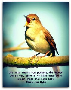 """""""Use what talents you possess, the woods will be very silent if no birds sang there except those that sang best."""" -Henry van Dyke"""