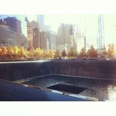 NEW YORK CITY: FIRST TIMER LOVE'S AND LESSONS