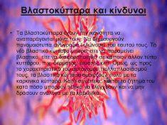 Image result for Βλαστοκυτταρα