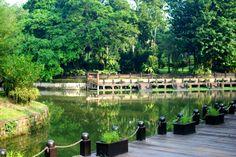 lake on the garden
