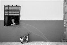 By Al Durer