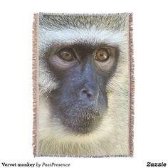 Vervet monkey throw blanket Photo Memories, Throw Blankets, Party Hats, Are You The One, Monkey, Art Pieces, Pattern, Monkeys, Model